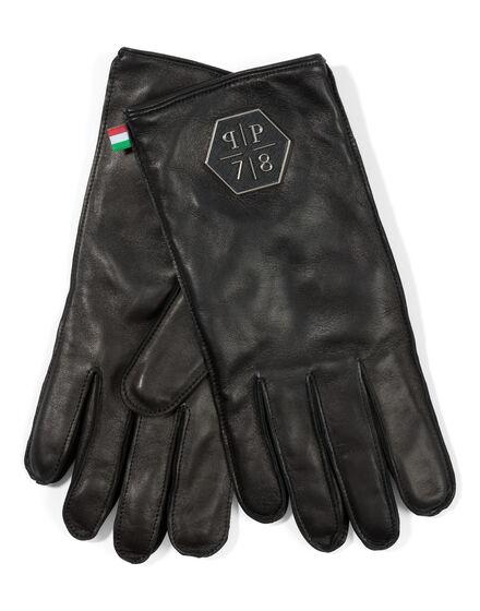 gloves bay