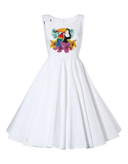 dress pelican