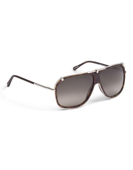 sunglasses zoo