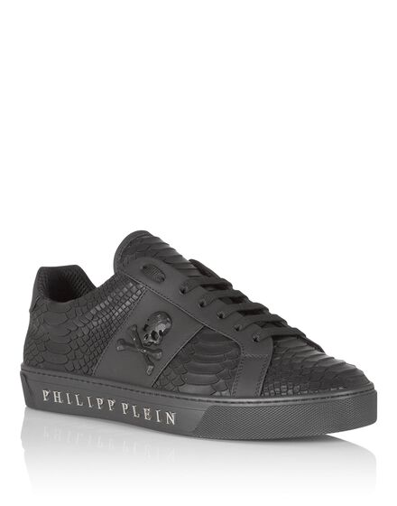 Lo-Top Sneakers talk slow